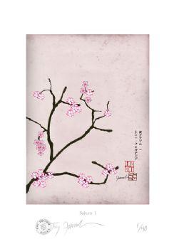 Cherry Blossom Print - Sakura 1